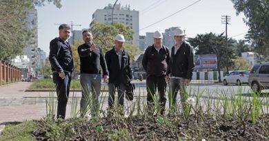 La Quinta de Olivos renueva sus frentes a Maipú y Libertador