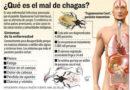 Chagas: una enfermedad silenciosa que se puede prevenir, tratar y curar si es detectada a tiempo